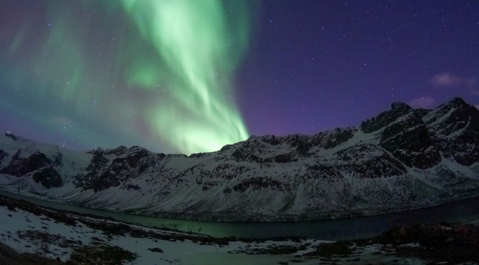 Winter dream in the Arctic: nordlys (Northern Lights)