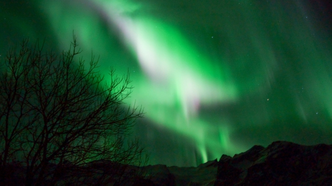 Hunting the northern lights – a wish come true
