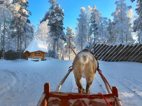 December, Christmas, Rovaniemi, Lapland, Finland