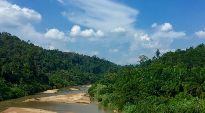 Malaysia: Jungle trekking