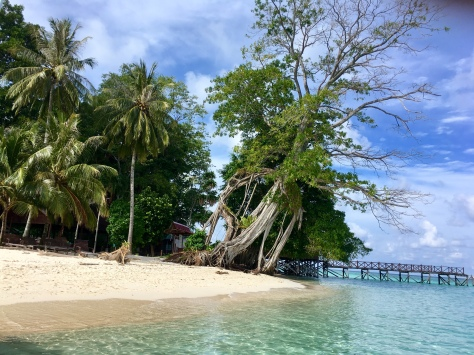 Sipadan island, diving, scuba, Asia, Malaysia, Borneo, beautiful places, adventure