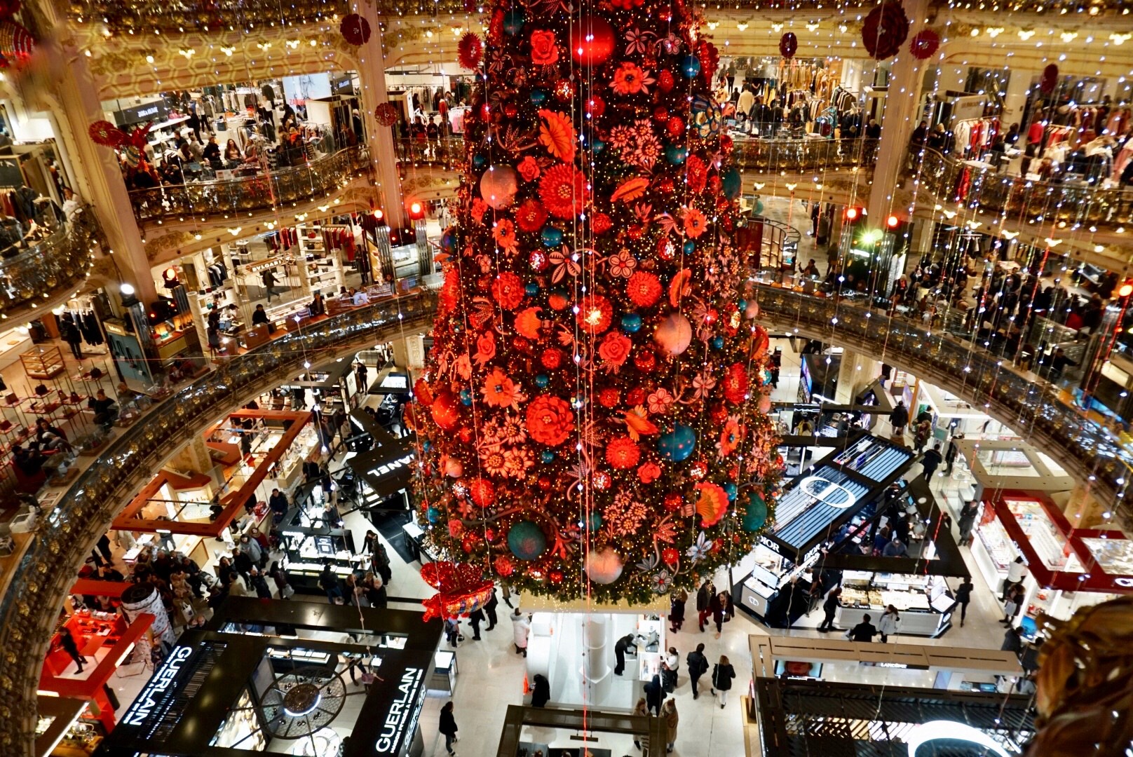 Paris in December, Christmas tree, wonderland, Galeries Lafayette