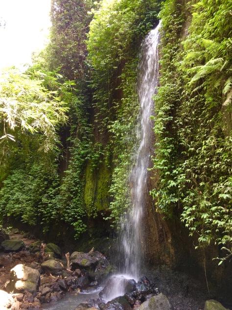 Waterfall, Bali, Ubud