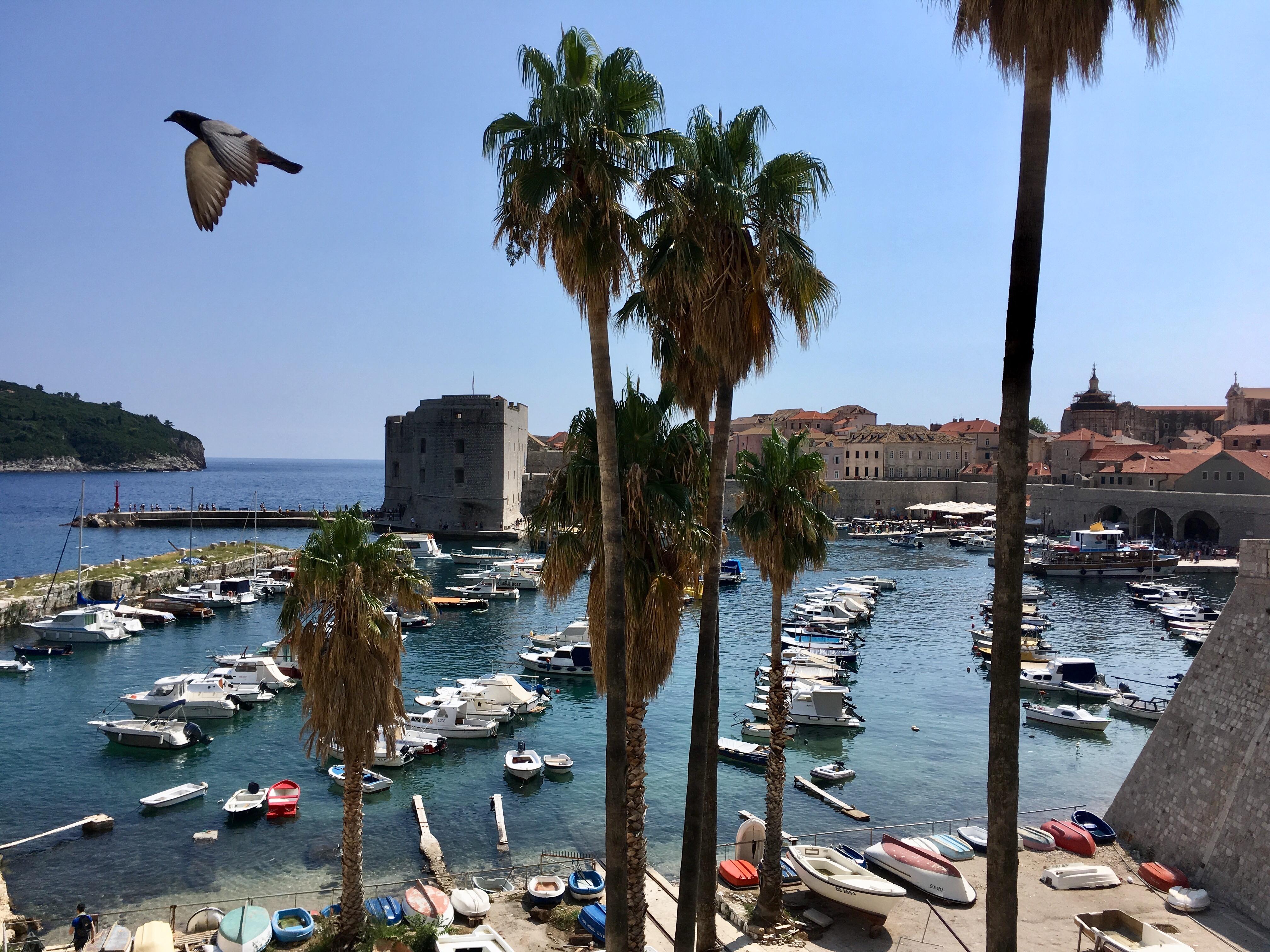Croatia, old town Dubrovnik
